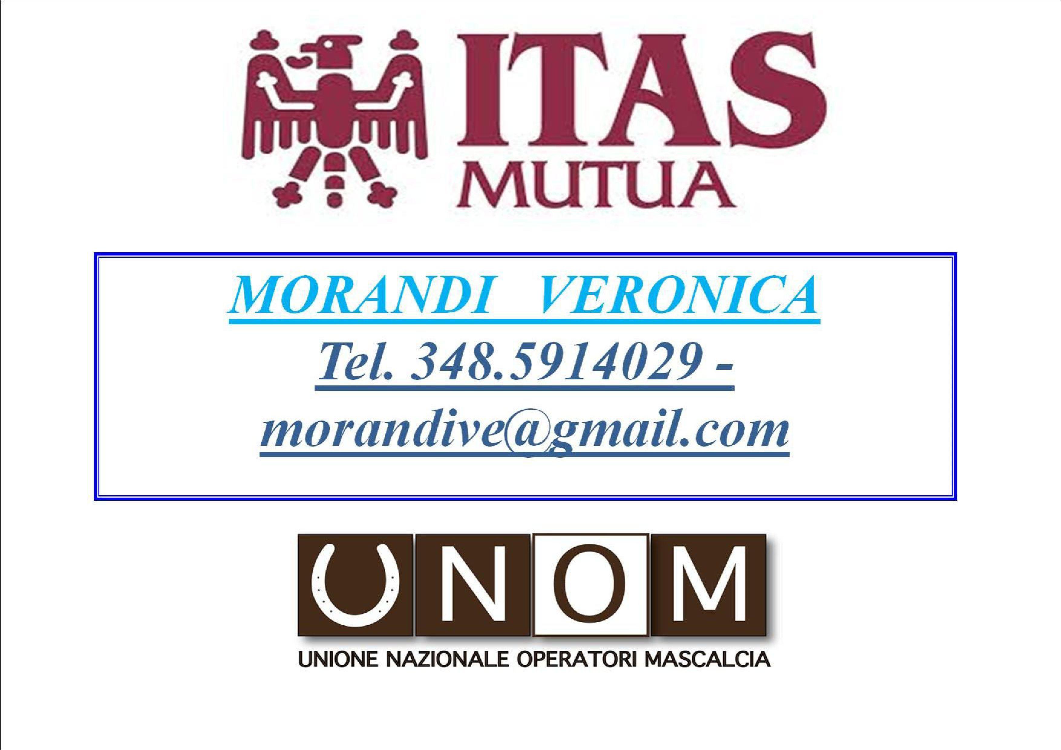morandi_all_1