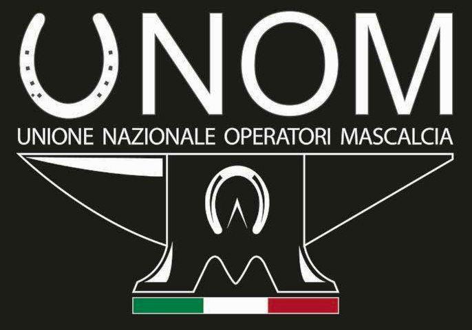logo unom 2017 black