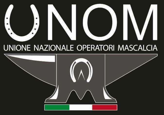 logo unom 2017 grey
