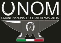 logo unom 2017 grey_ small