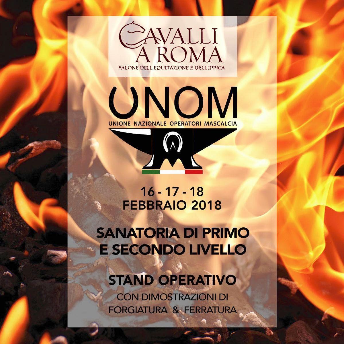 UNOM Roma